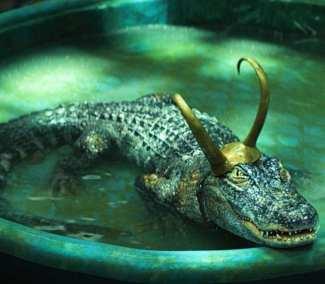 Alligator Loki Cosplay